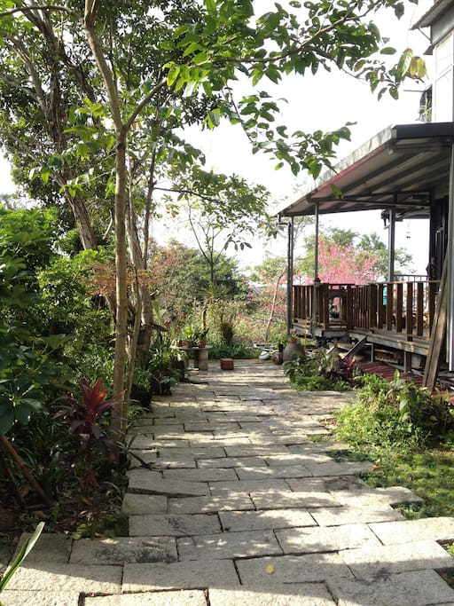 the little garden in front of the house