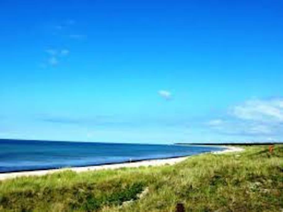 Stranden/natur