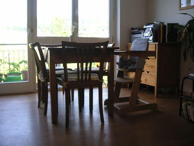 Wohnung mit 2 Balkonen im Vauban - Freiburg im Breisgau - Apartment