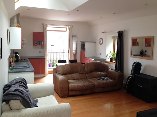Large room in modern central house. - Montrose - Casa