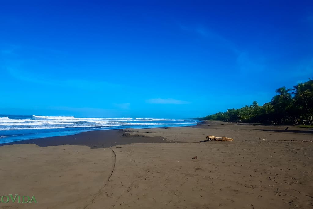 Playa Bejuco - Top 10 cleanest beach in Costa Rica. 3 Star Blue Flag designation!