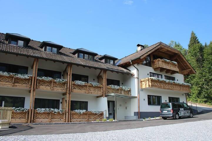 Modern Oostenrijk in Hochkönig. - Mühlbach am Hochkönig - Apartament