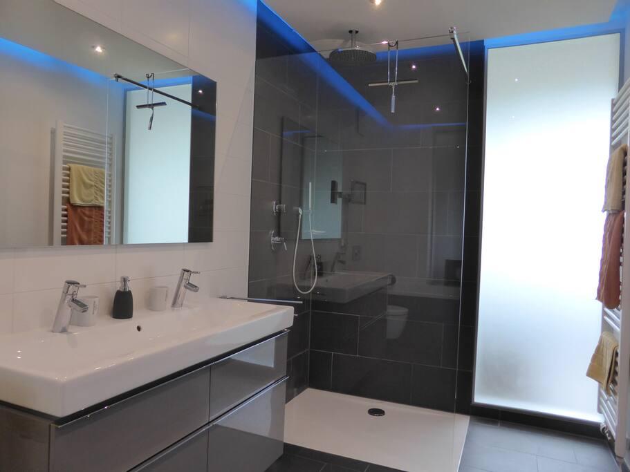 Offene gläserne Duschkabine mit Rain-Shower im Masterbad