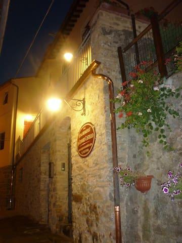Room & ensuite bathroom in B&B, Lucca hills