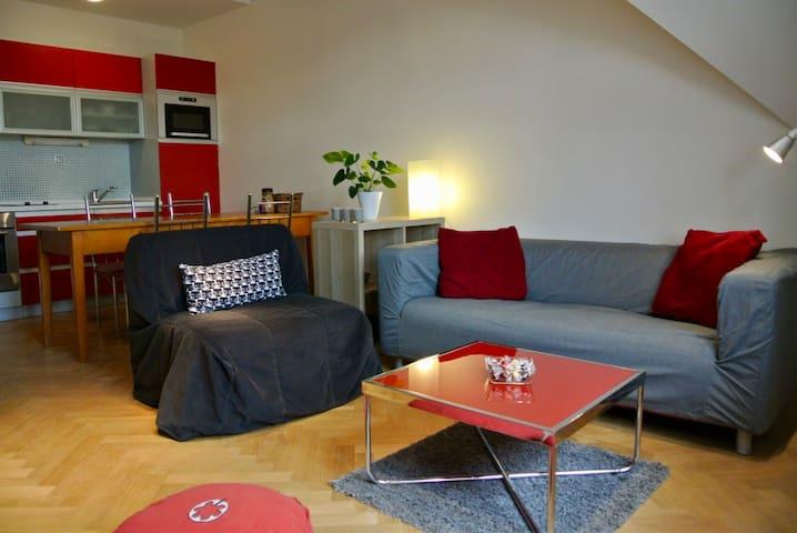 NEW! Window Large Duplex apartment (Just walk!)