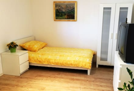 Quiet comfortable apartment - Ljubljana