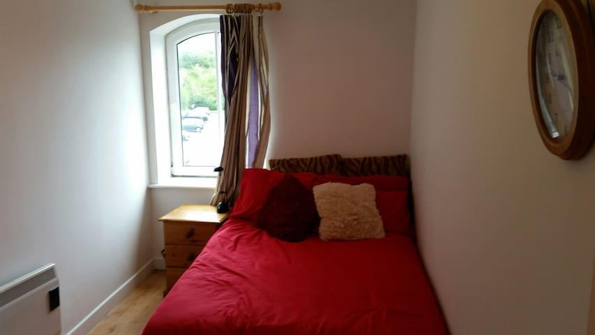 Really nice apartment in Cork city - cork - Apartment