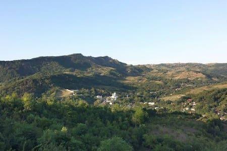 Village, hills, forests! - Rumah