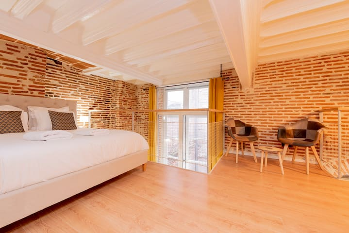 Exceptional apartment Hypercentre in Toulouse