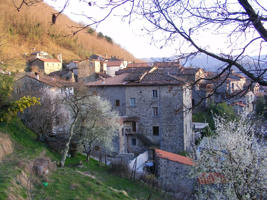 Gombereto Village