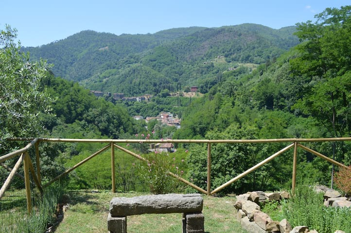 Tuscan olive farm apartment - Pescia - Byt