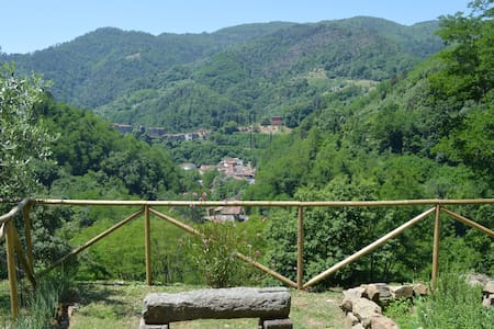Tuscan olive farm apartment - Pescia - Apartmen