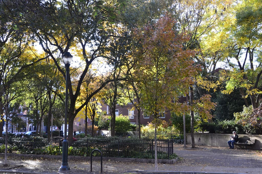 Louis Kahn Park situated across the street