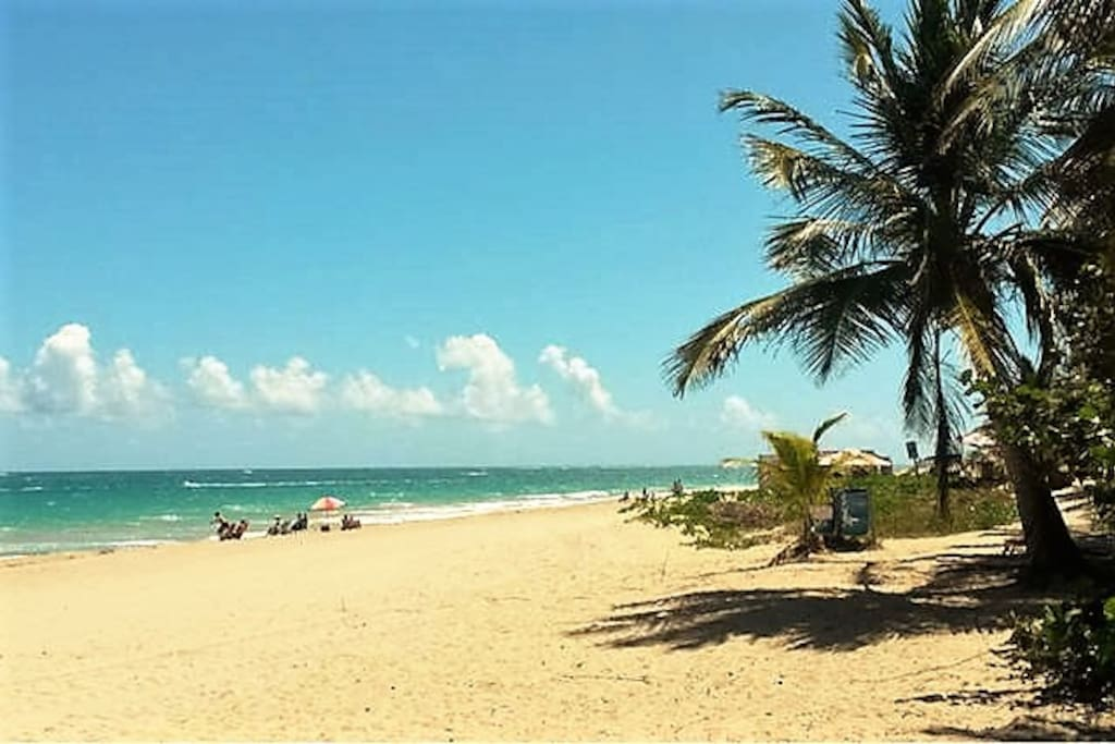 Ocean Park Beach: San Juan's best, and only steps from our place!