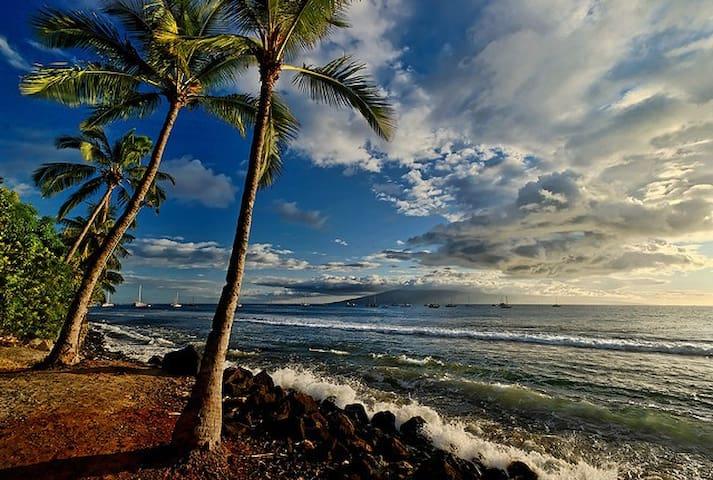 Moana Lani B&B-Ocean View Suite Rm4