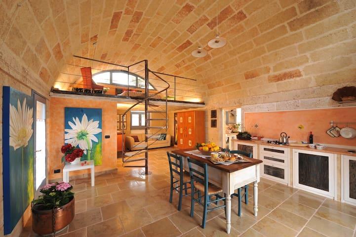 """Casa immersa in un """"mare"""" di ulivi - Spongano - Casa"""