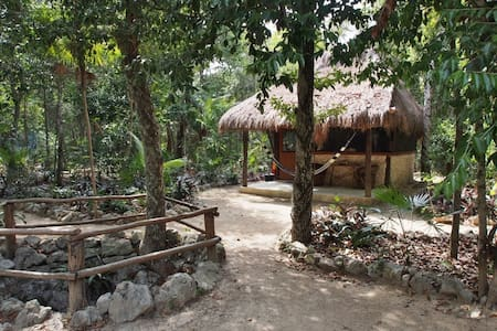 Cavelands in the Jungle - Chemuyil - Bed & Breakfast - 2
