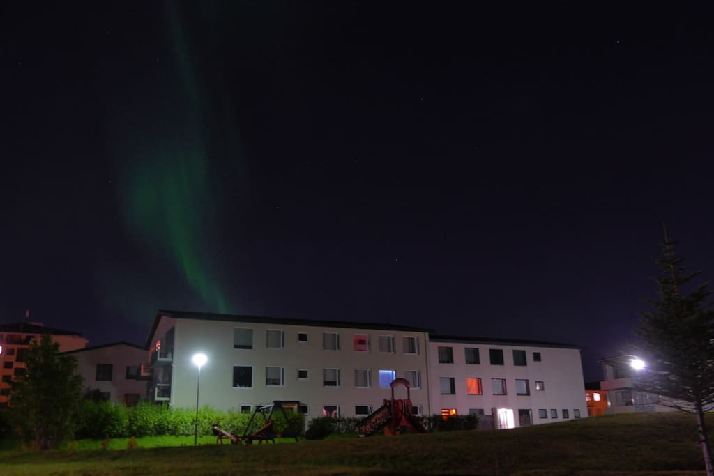 Yes, on occasion the northern lights are actually visible from inside Reykjavík :)