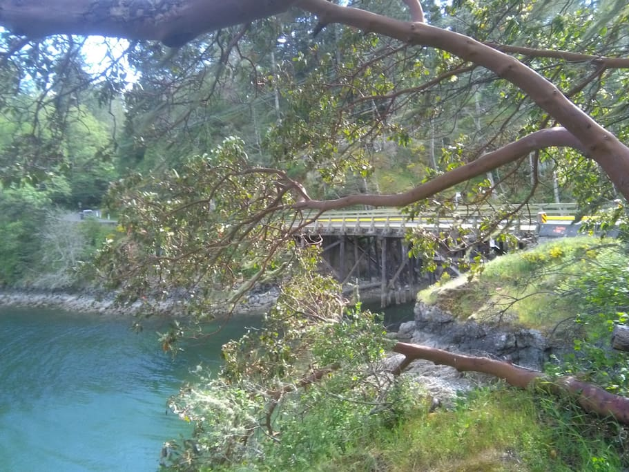 Roche Cove adjacent to Galloping Goose hiking and biking trail.
