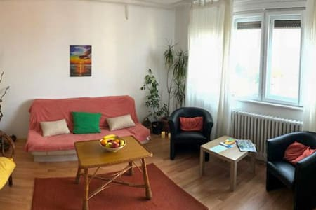 Sunshine apartment , cozy home with view