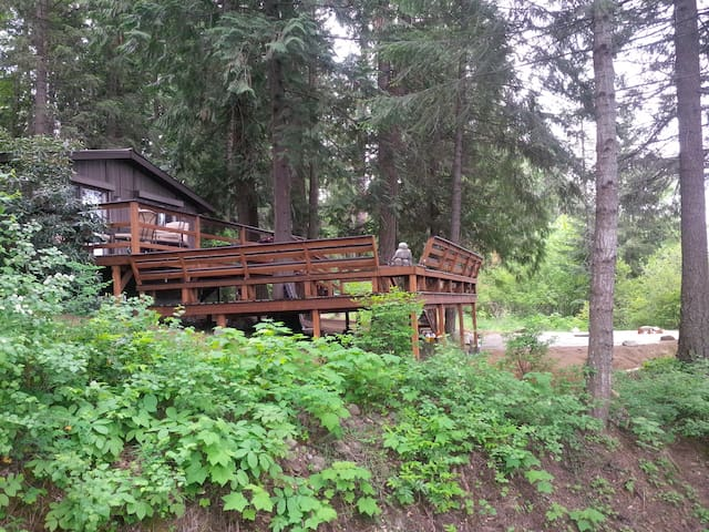 Pet Friendly, Cedar Forest Retreat - Sagle - Hus
