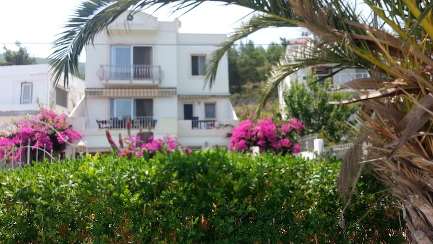 EXTRA SEASIDE DUPLEX/PRIVATE BEACH - Bodrum - Talo