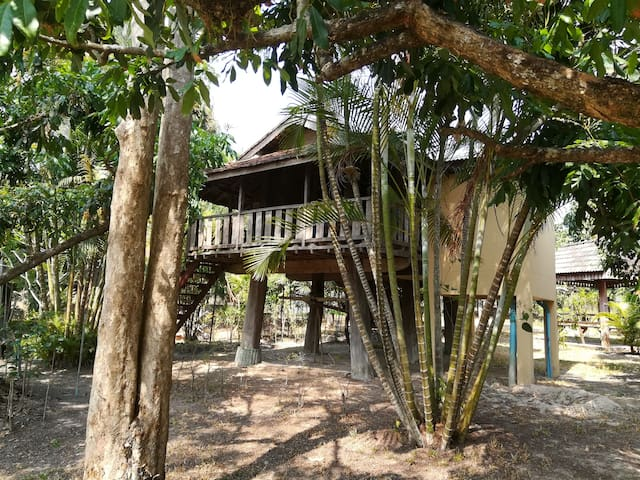 Khoom Kam Kaew Farm and Resort # 9