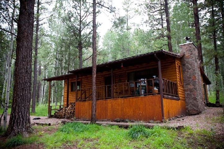 Secluded Mountain Cabin. Book Now!