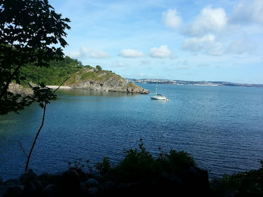 Fishcombe Cove, 12 mins downhill walk from the house: fish, wade, watch the tides & explore.