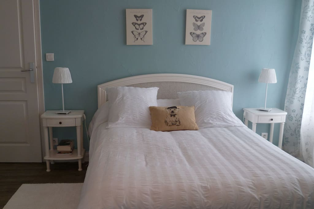 Bed breakfast bio amboise le rocher des violettes for Chambres hote amboise
