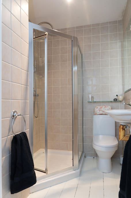 Shower room featuring handheld nozzle and rainfall shower head system complete with additional WC and wash hand basin.