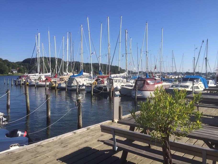 Lystbådhavnen på Kalvø - lige uden for døren!