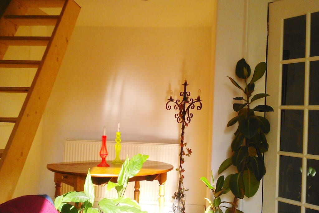 Bright living/dining space, beautiful afternoon light