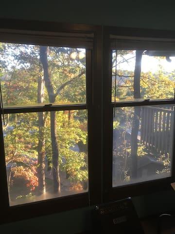"Bella Vista means ""Beautiful View!"""