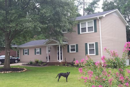 Cozy Full Bed/Near HWY & Greenville - Simpsonville - Hus