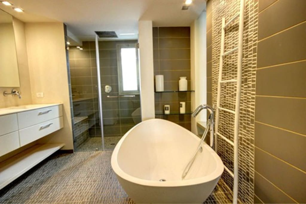 Bath and shower large and luxurious -master bathroom