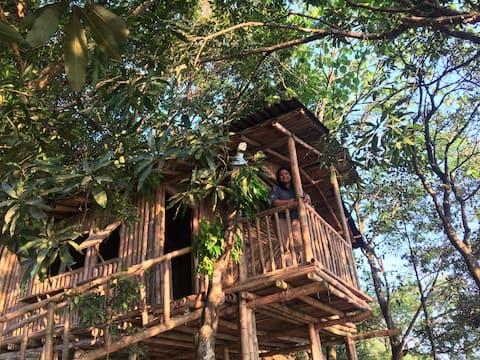 Mountain Villa - Bamboo Cottage