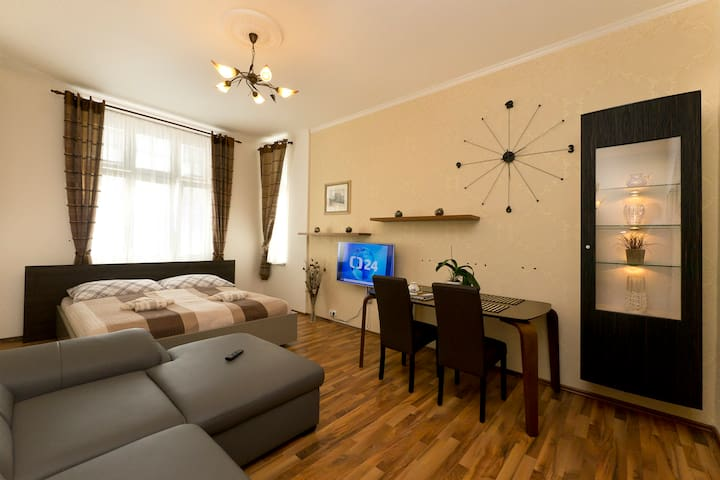 APARTMENT KARLA CAPKA STREET - ROYAL APARTMENT - Karlovy Vary - บ้าน