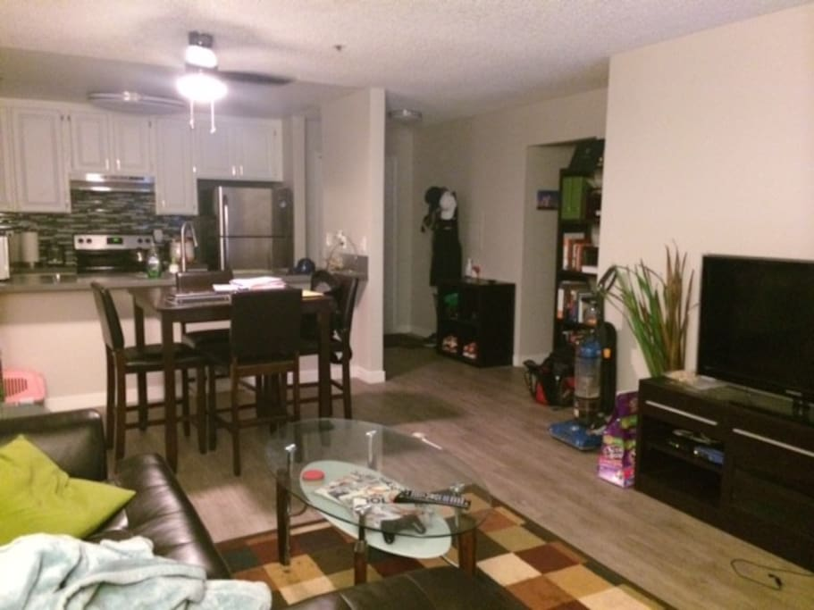 LARGE LIVING AREA WITH DINING TABLE AND KITCHEN NEW APPLIANCES