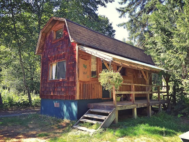 The Cabin on Cloudburst Mtn Farm - Squamish - Kabin