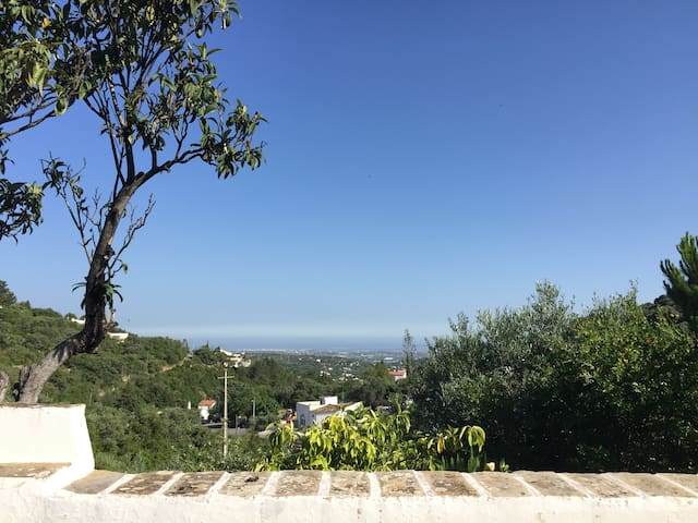 Country house with lovely seaview and olive trees - São Brás de Alportel - Ferienunterkunft