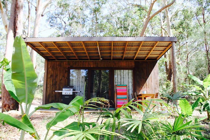 Converted Container home backing on to forest.