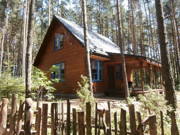 Leśna Polana - Domek rybacki