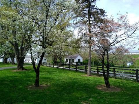 Cottage Retreat - Wine, Horses, Convenient