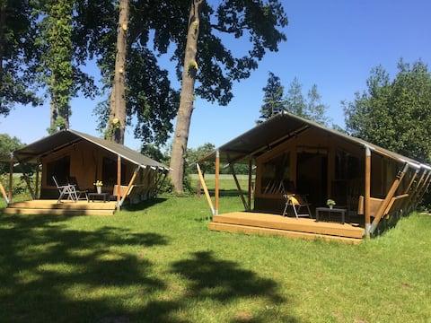 Luxe safaritent in boeren dorp Warmsen