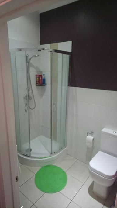Standing shower and toilet