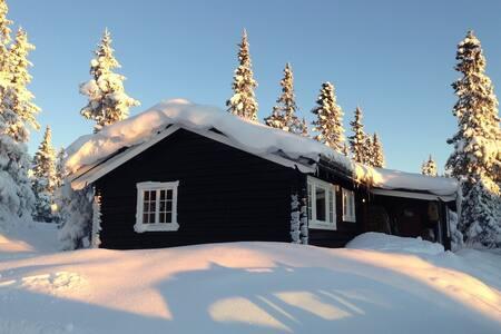 Fin hytte Hafjelltoppen, ski in/out - Øyer