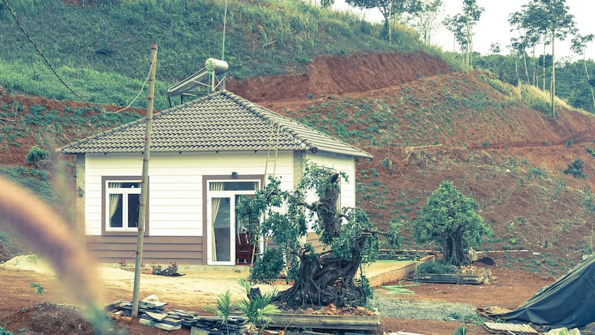 Plateau Homestay 2, Dak Nong - House on the hill