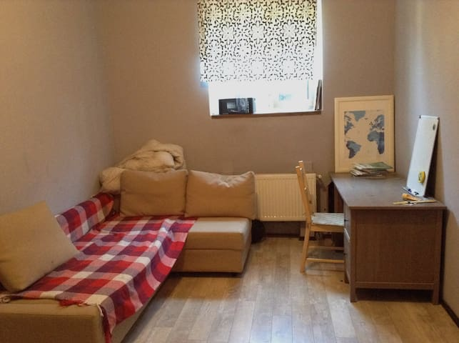 Clean studio 15 min from Moscow - Bryokhovo - Appartement
