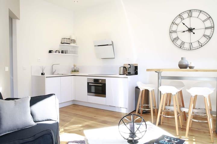 appartement t3 le carlton appartamenti in affitto a lilla nord passo di calais francia. Black Bedroom Furniture Sets. Home Design Ideas